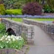Stock Photo: Garden walkway