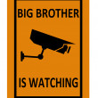 Surveillance sign — Stock Photo #9463257