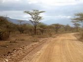 Desert road in Tsavo East National Park — Stock Photo