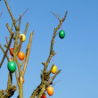Some colourfull easter eggs hanging at branches - Stock Photo
