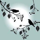 Birds on the branch. Summer days. — Stock Vector