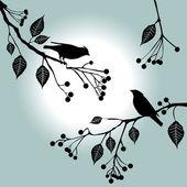 Pájaros en la rama. días de verano. — Vector de stock
