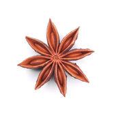 Single star anise isolated on white — Stock Photo