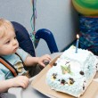 Stock Photo: Tot with cake