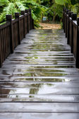 Wooden walkway — Stock Photo