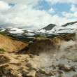 Stock Photo: Geysers in Mutnovskayvalley