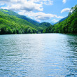 Bright sunny forest lake — Stock Photo #10280099