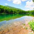 Picturesque lake in the park — Stock Photo #10280105