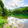 Beautiful lake in the park — Stock Photo