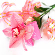 Stock Photo: Pink orchid with gift wrappings