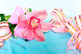 Pink orchid with gift wrappings — Stock Photo