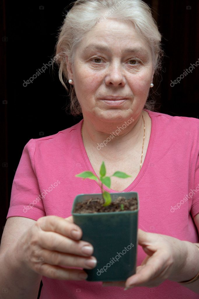 An elderly woman holding a pot with a sapling — Stock Photo #9789921
