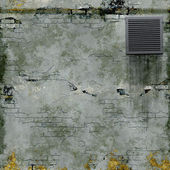 Cellar wall — Stock Photo