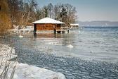冬天湖 — 图库照片