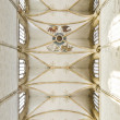 Church Ulm — Stock Photo