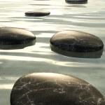 Step stones black — Stock Photo #9899068