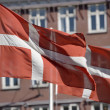 Danish Flags — Stock Photo #9294794