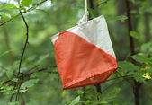 Orienteering control in the nature — Stock Photo