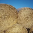 Stock Photo: Hay Stacks