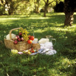 Picnic — Stock Photo #9459218