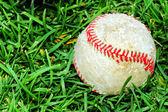 Beyzbol çimenlerin üzerinde — Stok fotoğraf