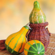 Decorative pumkins - Stock Photo