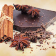 Closeup of chopped chocolate, cinnamon and anise — Stock Photo