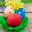 Three colorful easter eggs in green nest — Stok fotoğraf