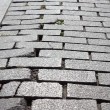 Damaged cobblestone pavement — Stock Photo
