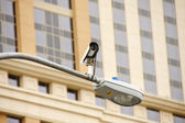 Traffic Camera on Street Light — Stock Photo
