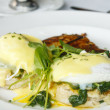 Stock Photo: Eggs Florentine Benedict on White Plate