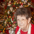 Foto de Stock  : Grandmother at Christmas