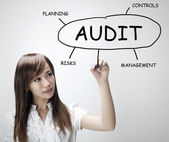 Audit plan — Stockfoto