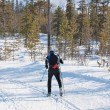Skier runs cross-country skiing — Stock Photo #10498147