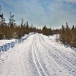 Empty trails for cross-country skiing — Stock Photo