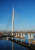 Pylonový most přes ada, bělehrad - srbsko — Stock fotografie