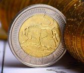 Extremadamente cerrar vista de moneda sudafricana — Foto de Stock