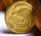 Extremely close up view of New Zealand dollar currency — Stock Photo