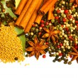 Pack of several spices, anise, cinnamon, pepper, charlock — Stock Photo #8457011