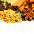 Pack of several spices, anise, cinnamon, pepper, charlock — Stock Photo #8457035