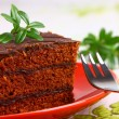 Delicious chocolate cake — Stock Photo #9985650