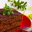 Delicious chocolate cake — Stock Photo #9985713