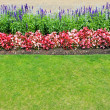 Stock Photo: Garden edge