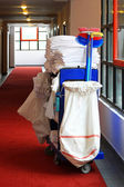 Cleaning cart — Stock Photo
