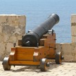 Cannon — Stock Photo #8510567