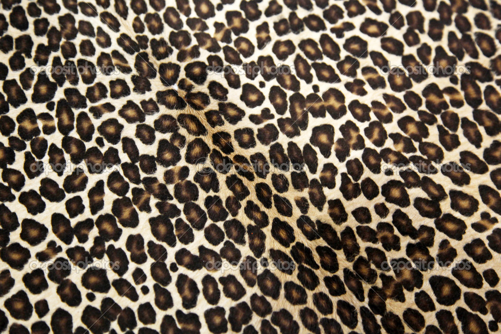 Safari style leopard hide pattern — Stock Photo #8770770