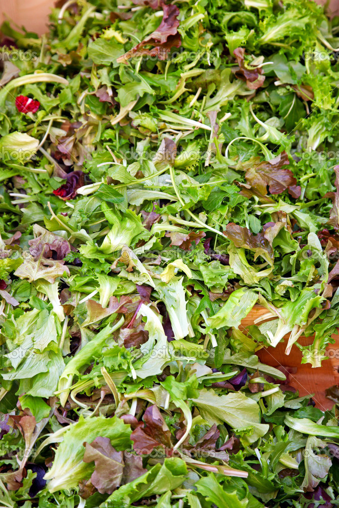 Green salad mix healthy food  Stock Photo #8890164