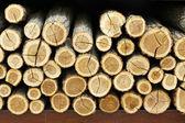 дрова — Стоковое фото