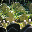 Pets cemetery - Stock Photo