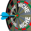 Niche Words on Dartboard Dart Hones on Specialized Demo - Stock Photo